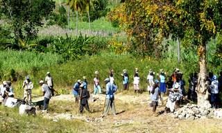 construction de routes à Haiti, Konbit